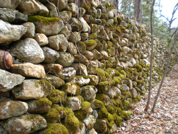 Hambidge Center rock wall